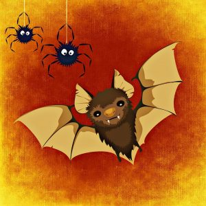 Bat and Spiders